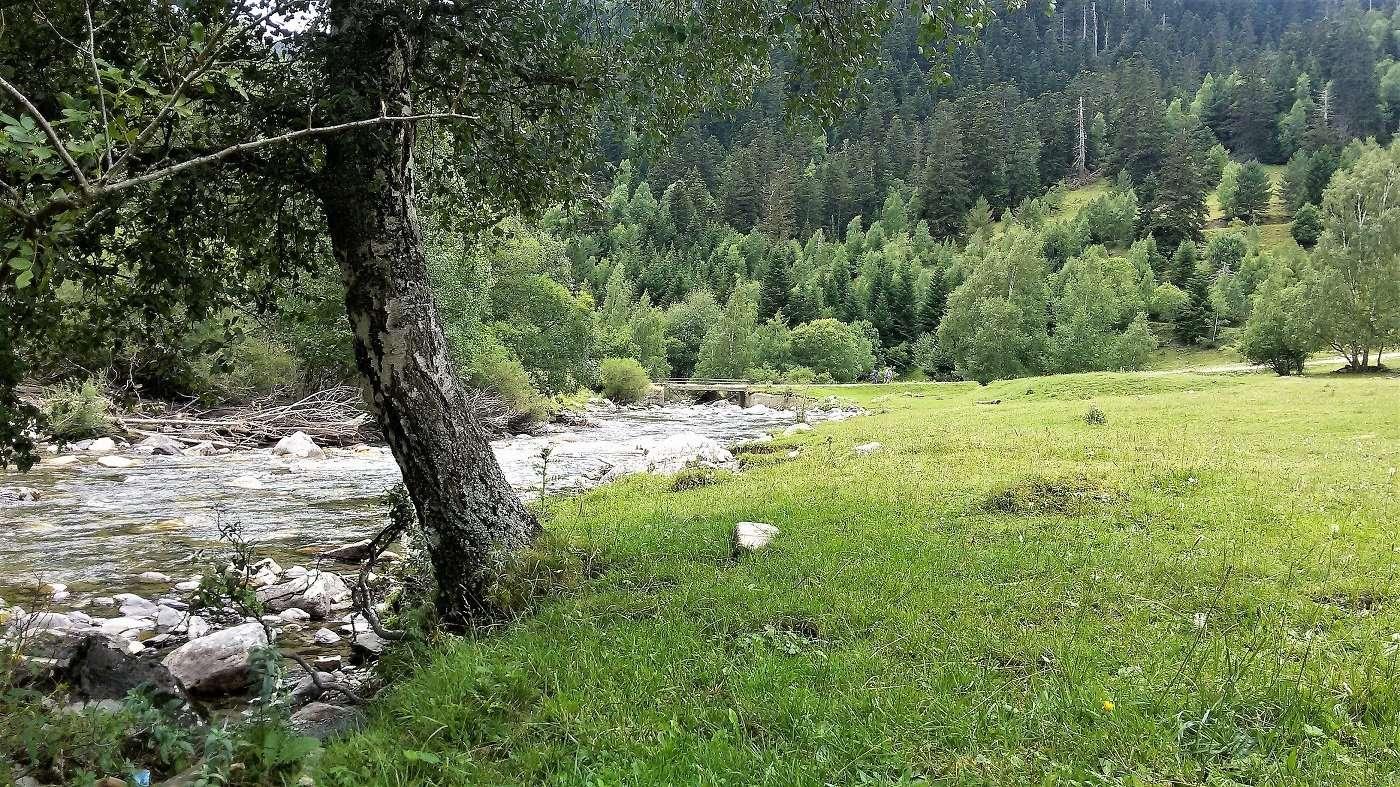 1400 bonabe perosa pallars riu