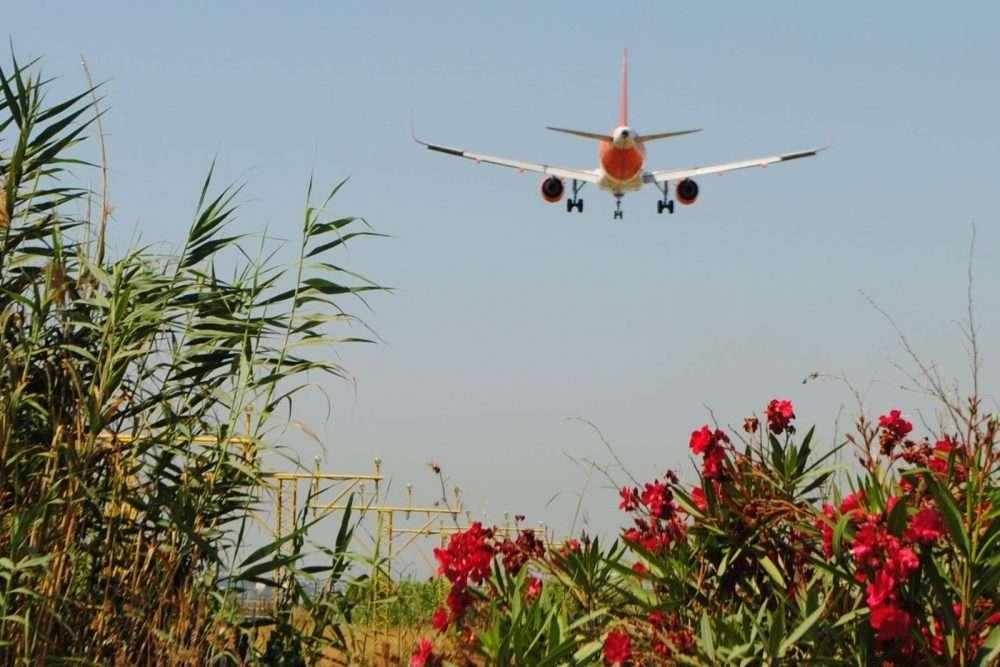 1000 FITXA 3 EASY JET el prat catàleg avions ocell de ferro llobregat delta