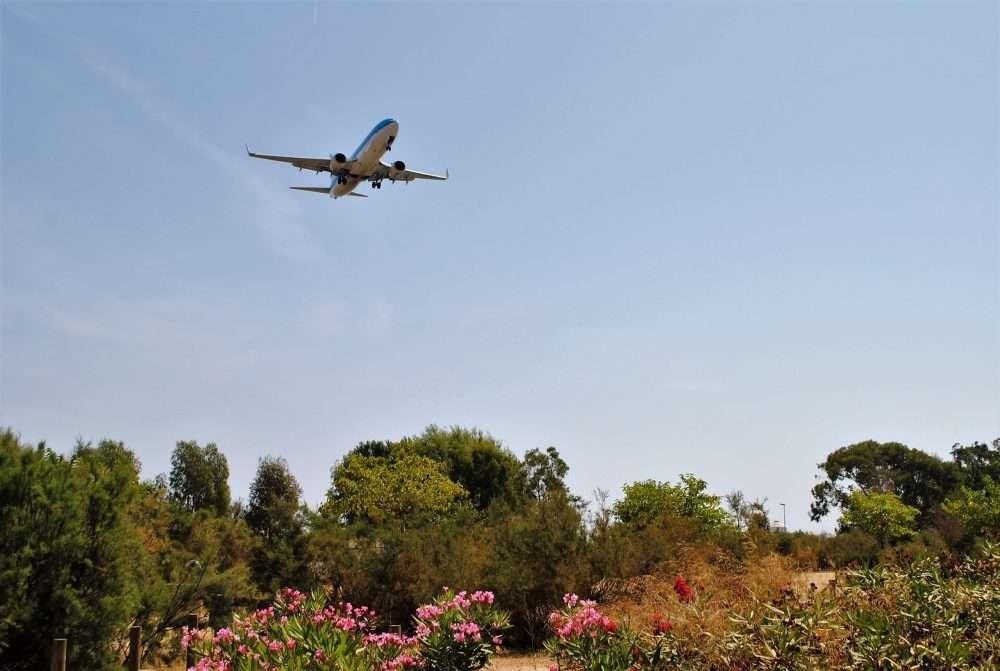 1000 FITXA 4 BIS KLM catàleg avions ocell de ferro llobregat delta