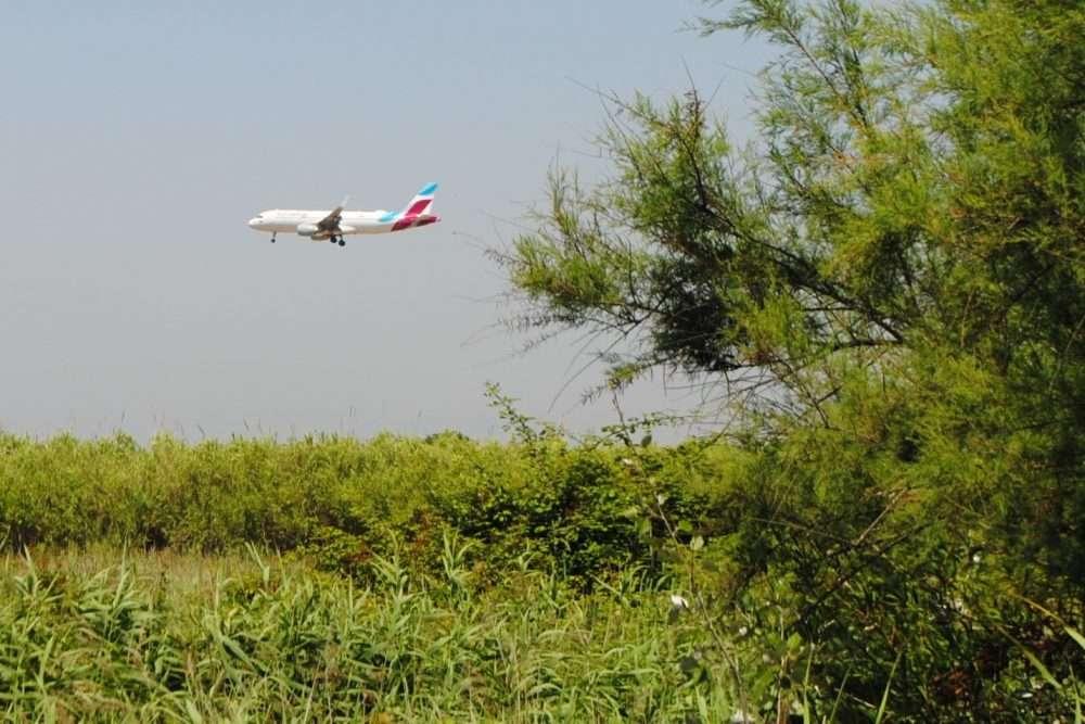 1000 fitxa 7 eurowings catàleg avions ocell de ferro llobregat delta