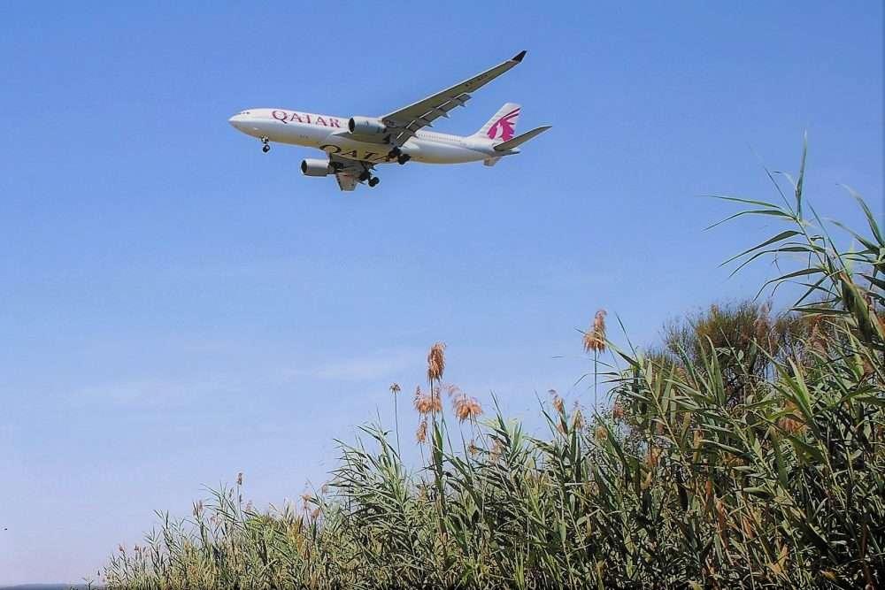 1000 fitxa 8 qatar catàleg avions ocell de ferro llobregat delta