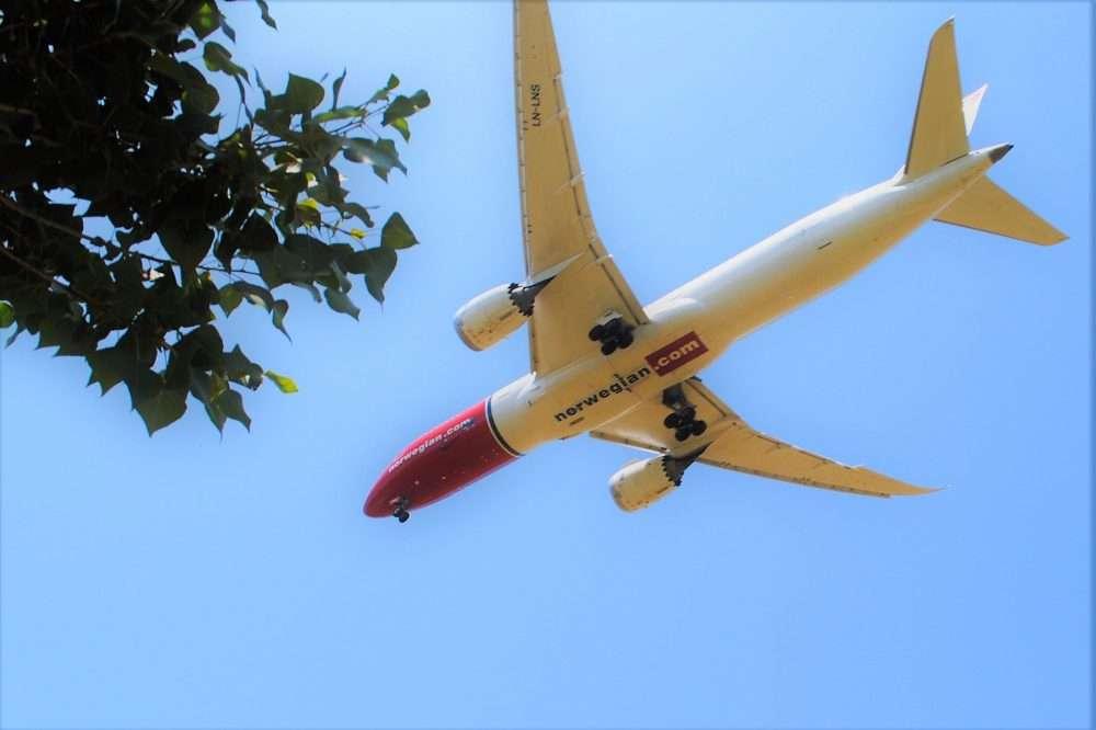1000 fitxa 9 norwejan catàleg avions ocell de ferro llobregat delta